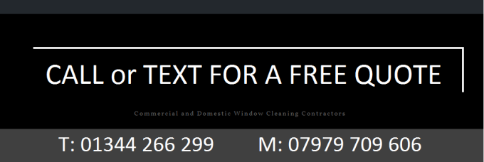 Local window cleaner